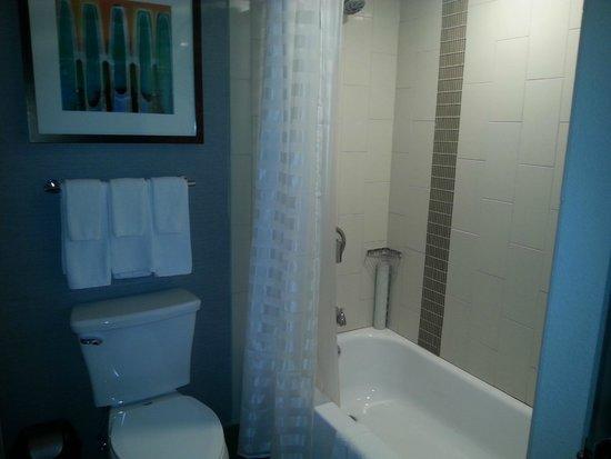 Hyatt Place Minneapolis/Downtown: bathroom