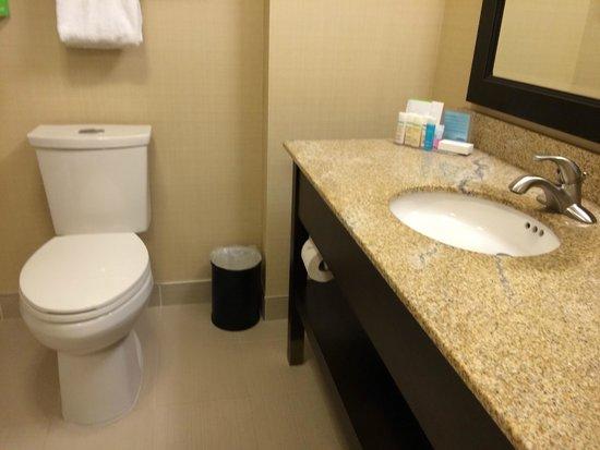 Hampton Inn by Hilton Sydney: 乾淨的浴室