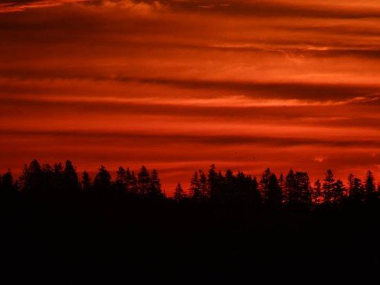 Castalia Marsh Retreat : Beautiful Sunrise