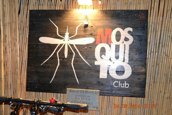 Mosquito Club: O Mosquito