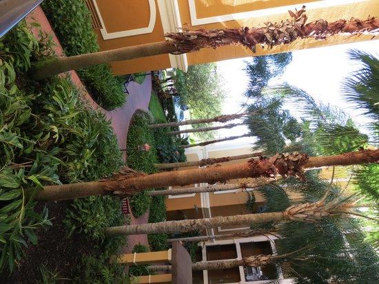 Floridays Resort: area externa
