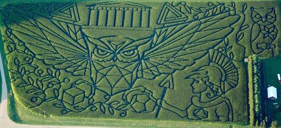 Treinen Farm: Treinenfarm Farm 2014 Owl of Athena Maze