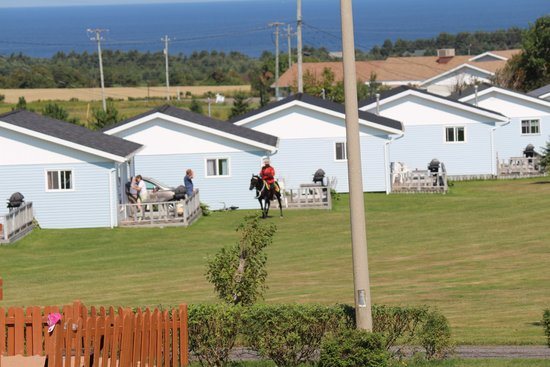 Cavendish Bosom Buddies Cottages and Suites : Home Away From Home