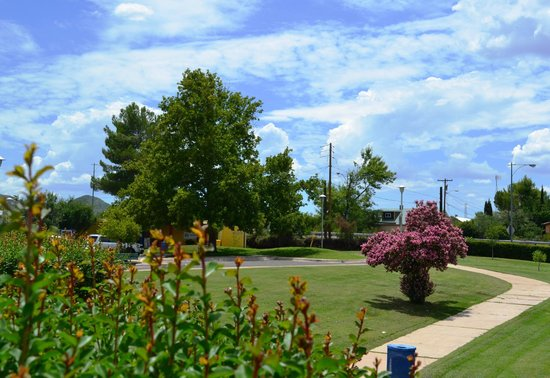 Nogales-SCC Chamber of Commerce Visitor & Tourism Center: Catch a glimpse of lush landscaping to be seen in Southern Arizona!