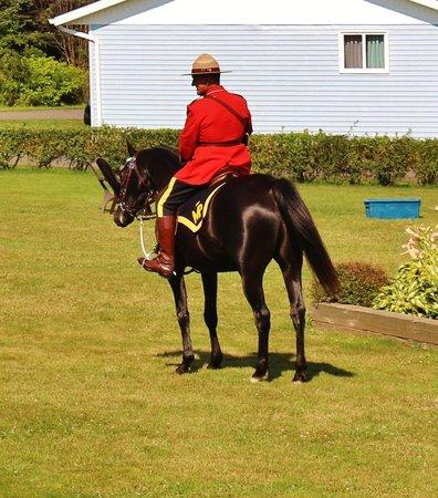 Cavendish Bosom Buddies Cottages and Suites : RCMP visit