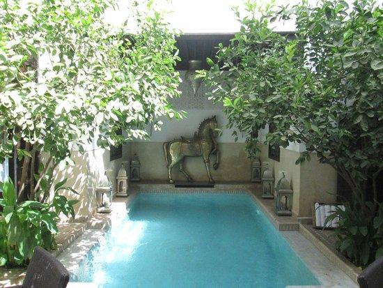 Riad Assakina : pool