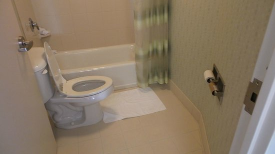 SpringHill Suites Pittsburgh North Shore : Toilet paper way to far from the toilet.