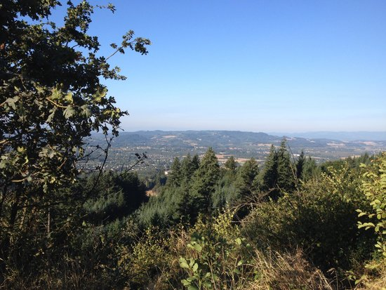 Chehalem Ridge Bed and Breakfast: View from Mountain Top Road