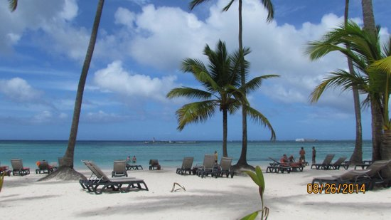 Barcelo Bavaro Beach - Adults Only: Oceanfront