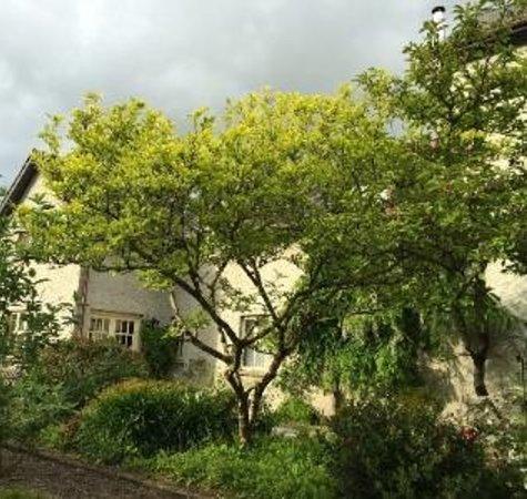 Shelburne Lodge : Side of the Garden House
