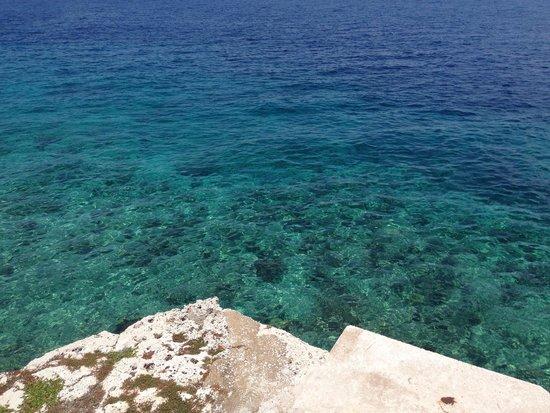 Hilton Curacao: Aguas cristalina da praia do hotel