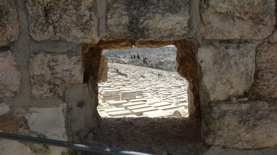 Mount of Olives: Елеонская гора, большая её часть -огромное кладбище