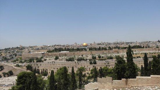 Mount of Olives: Елеонская гора. Панорамный вид на Храмовую гору