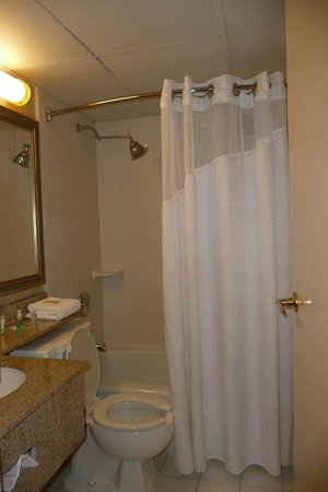 Holiday Inn Burlington: Bathroom