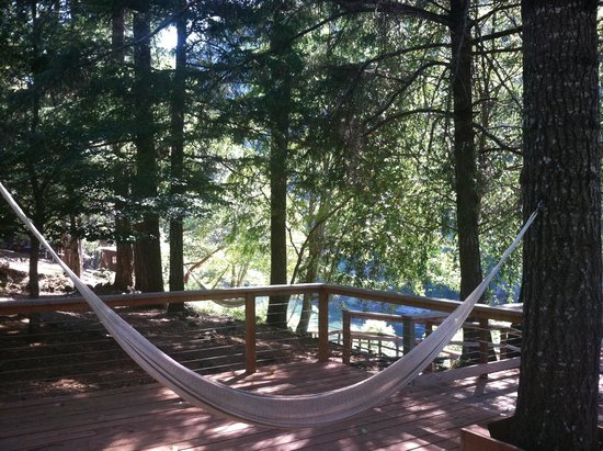 Paradise Lodge: Relaxation at its finest!  Hammocks and quiet sitting areas all over grounds