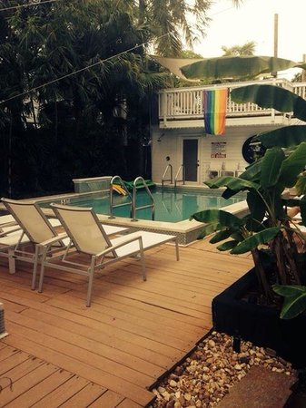 Alexander's LGBT Guesthouse: Pool View