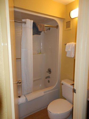 Rosen Inn at Pointe Orlando: Banheiro, limpo diariamente, toalhas limpas