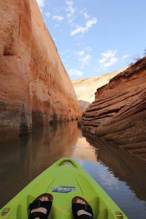 Hidden Canyon Kayak: labyrinth canyon