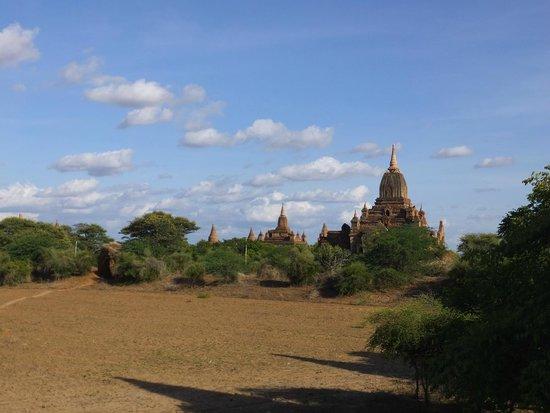 Temples de Bagan : 仏塔 ②