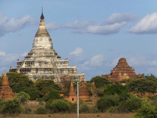 Temples de Bagan : 仏塔 ③