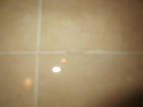 Crowne Plaza White Plains Downtown : Missing Grout in Guest Bathroom