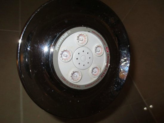 Crowne Plaza White Plains Downtown : Shower Head in Guest Bathroom