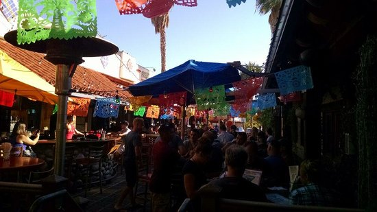 Fred's Mexican Cafe: Festive decor
