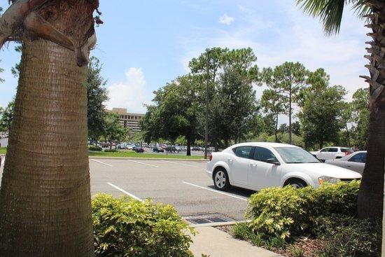 Holiday Inn Orlando – Disney Springs Area: 部屋からの眺め