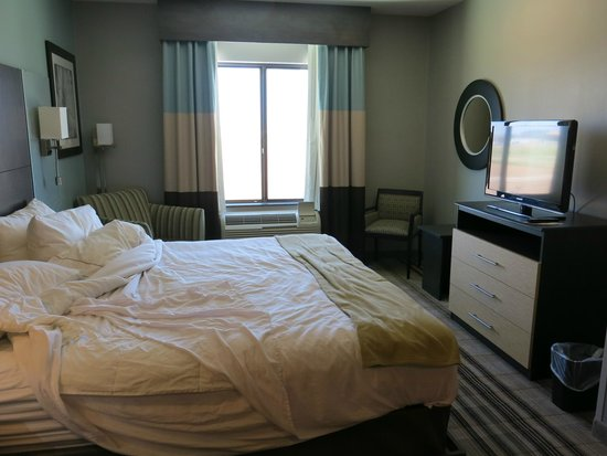 Holiday Inn Express & Suites Amarillo West: bedroom