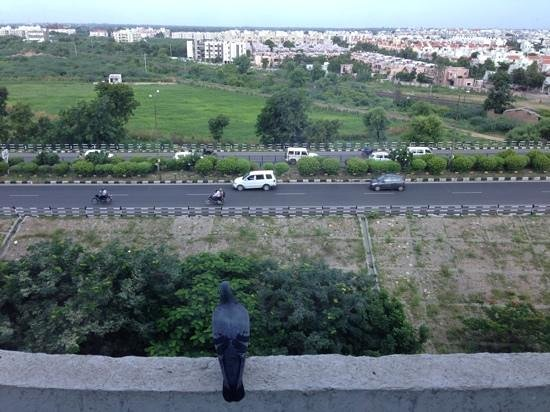 The Fern Ahmedabad: view from the room
