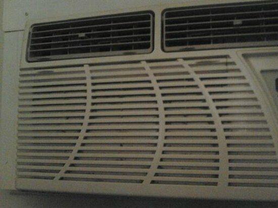 Alpine Inn & Suites : filthy air conditioner