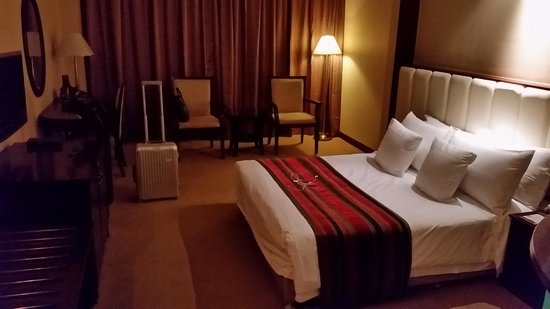 Southern Airlines Hotel : Single room