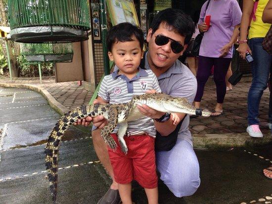 Crocodile Park: Wow
