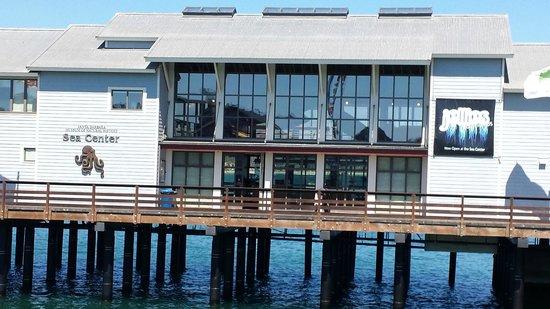 Stearns Wharf : Santa Barbara Museum of Natural History Sea Center