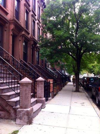 Harlem: Beautiful leafy streets