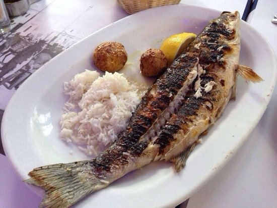 Kounelas Fish Tavern: Grilled sea bass