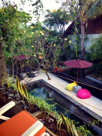 The Studio Bali : From room upstair