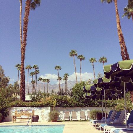 Parker Palm Springs: POOLSIDE