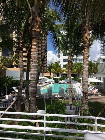 COMO Metropolitan Miami Beach: Piscine