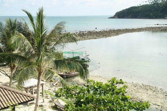 Cookies's Salad Resort: Der Strand, sehr schön jedoch sehr flach