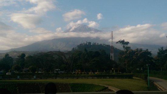 Mount Meru Hotel: View of Mountain Meru from the Hotel