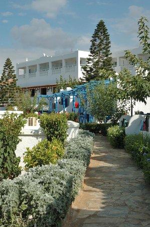 Mitsis Rinela Beach Resort & Spa : домики и растения