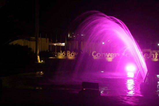 Barcelo Bavaro Beach - Adults Only: фонтан у подъезда к отелю