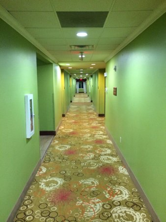"Sleep Inn & Suites I-20 : ""Gloriously Green"" I can hear their decorator say!"