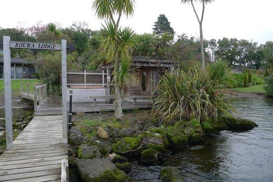 Koura Lodge: Spa Pool and Sauna