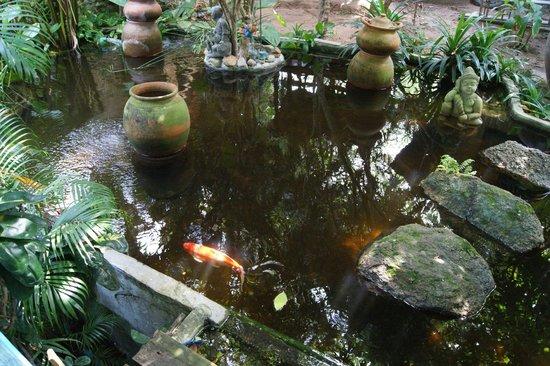 Varinda Garden Resort: fish pond