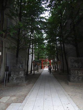 Shinjuku Gyoen National Garden: Nearby Alley