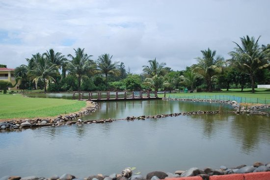 The LaLiT Golf & Spa Resort Goa : The pond
