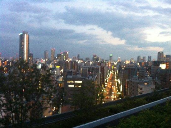 ANA Crowne Plaza Kobe: 薄暮の景色