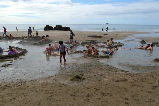 Hot Water Beach : 14 degrees celsius and still swim suit weather!